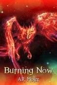 Review: Burning Now by A.R. Moler
