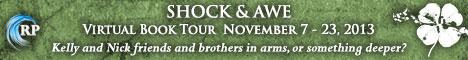 shock and awe tour banner