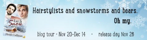 let it snow tour banner