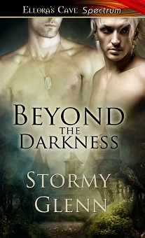 Review: Beyond the Darkness by Stormy Glenn