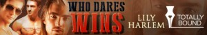 who dares wins banner