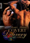 Excerpt and Giveaway: Covert Delivery by Draven St. James