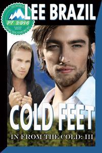 Review: Cold Feet by Lee Brazil