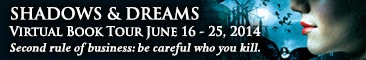 shadows and dreams banner