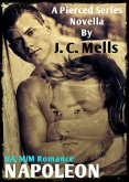 Review: Napoleon by J.C. Mells