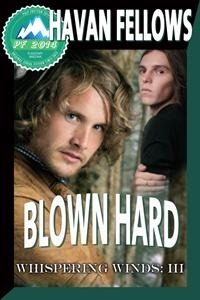 Review: Blown Hard by Havan Fellows