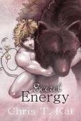 Review: Secret Energy by Chris T. Kat