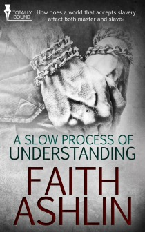 Review: A Slow Process Of Understanding by Faith Ashlin