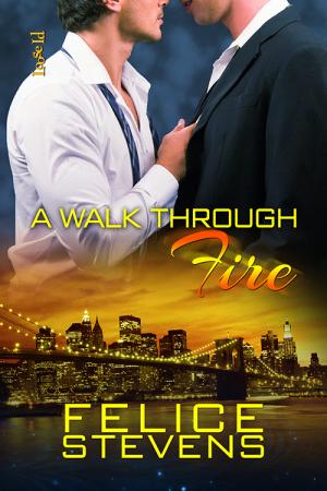 Buddy Review: A Walk Through Fire by Felice Stevens