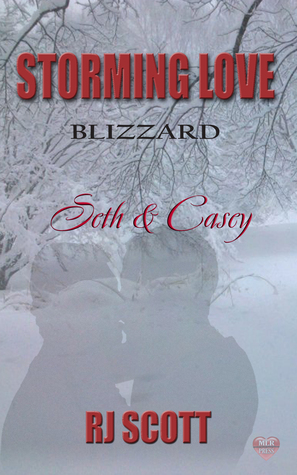 Review: Storming Love Blizzard: Seth and Casey by R.J. Scott