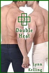 Review: Double Heat by Lynn Kelling