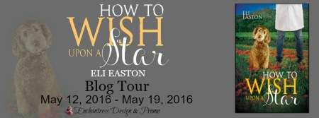 How-to-Wish-Upon-a-Star-Blog-Tour-Banner