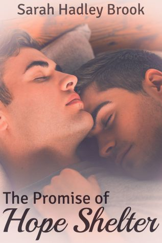 Review: The Promise of Hope Shelter by Sarah Hadley Brook