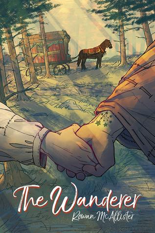 Review: The Wanderer by Rowan McAllister