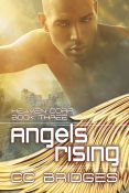 Review: Angels Rising by C.C. Bridges