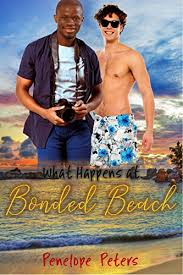 Review: What Happens at Bonded Beach by Penelope Peters