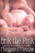 Review: Erik the Pink by Matthew J. Metzger