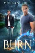 Review: Burn by Morgan Brice