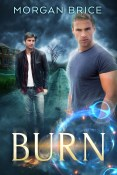 Guest Post: Burn by Morgan Brice