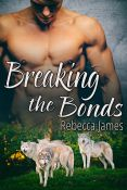 Review: Breaking the Bonds by Rebecca James