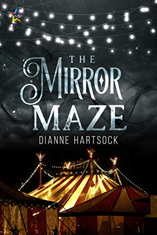 Review: The Mirror Maze by Dianne Hartsock