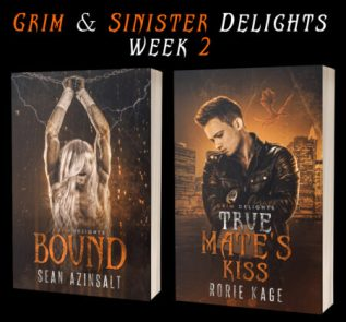 Guest Post and Giveaway: Grim and Sinister Delights with Sean Azinsalt and Rorie Kage
