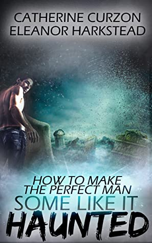 Review: How to Make a Perfect Man by Catherine Curzon and Eleanor Harkstead