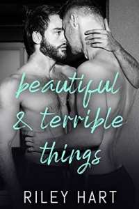Beautiful and terrible things cover