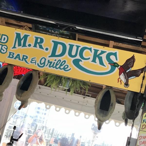 mr-ducks-ocean-city-maryland