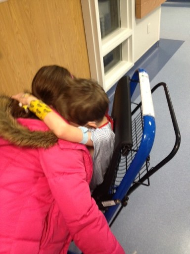 Our two patients having to say goodbye as Eboo was better.  It was devastating to Presto to see her go.