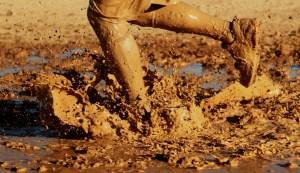 mud marks