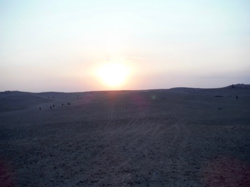 That is open Arabian Desert...with locals galloping around on their horses!!