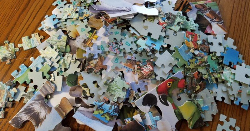 jumbled puzzle piece from three different puzzles on a brown table