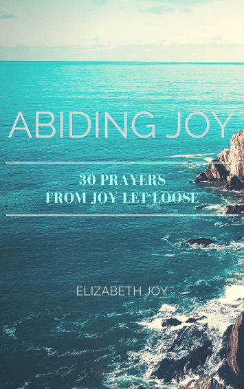 abiding joy, finding joy ebook