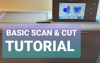 Brother Scan N Cut Basic Tutorial Featuring Stampin Up Poinsettia Petals