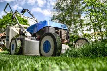Lawn mower mowing grass