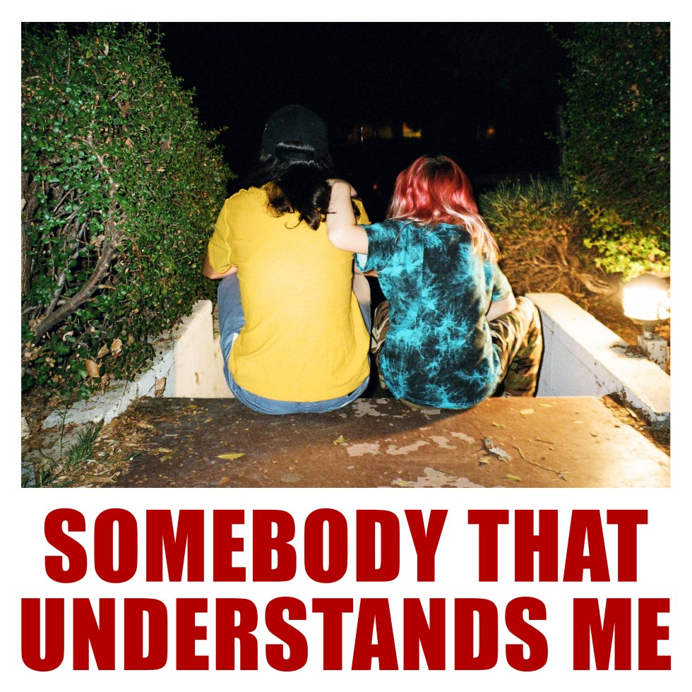 V&L_somebodythatunderstandsme_artwork