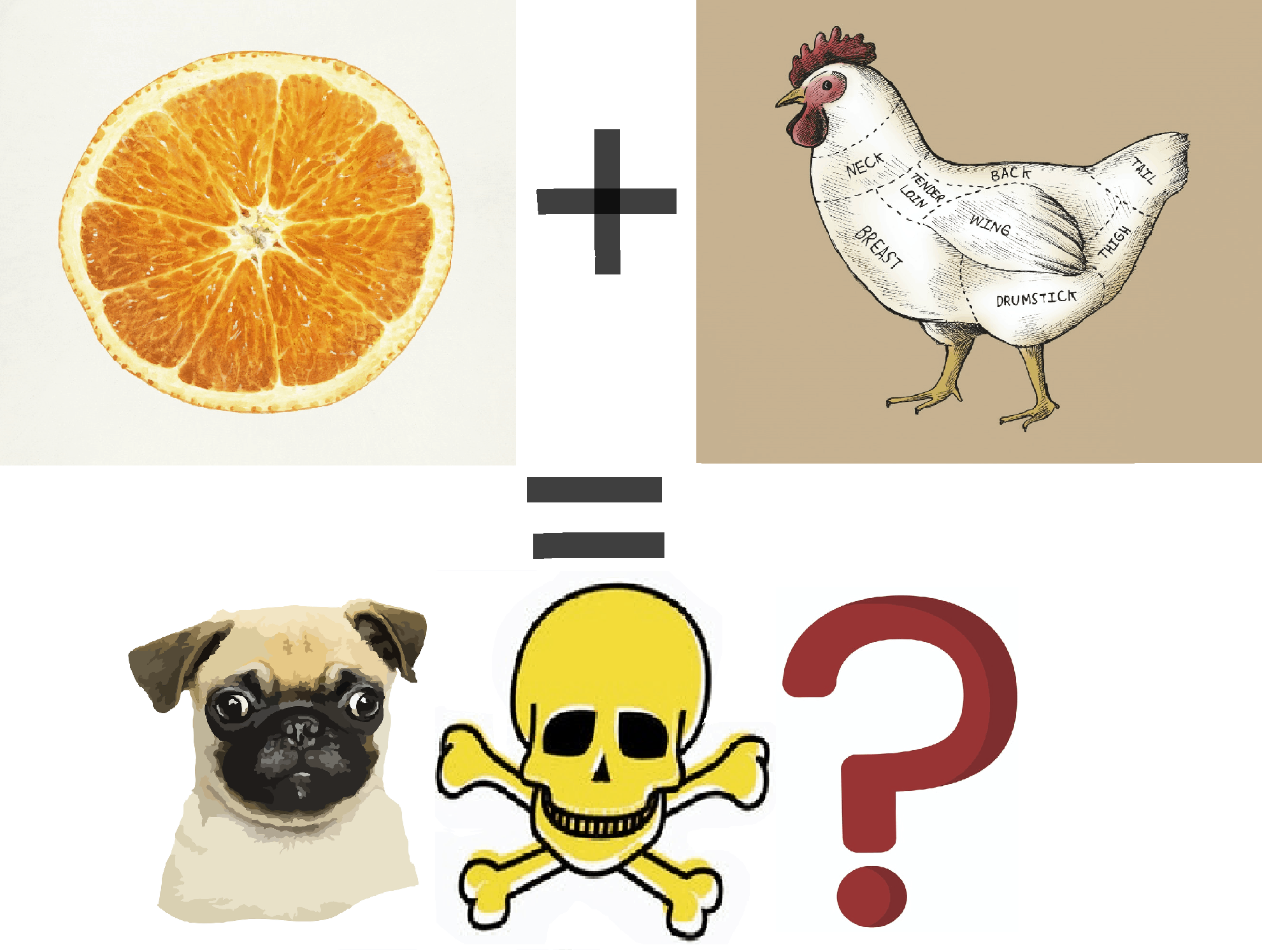 Can dogs eat orange chicken or is it poison?