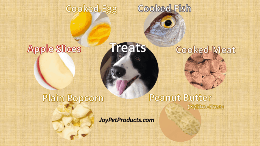 Suitable dog treats infographic