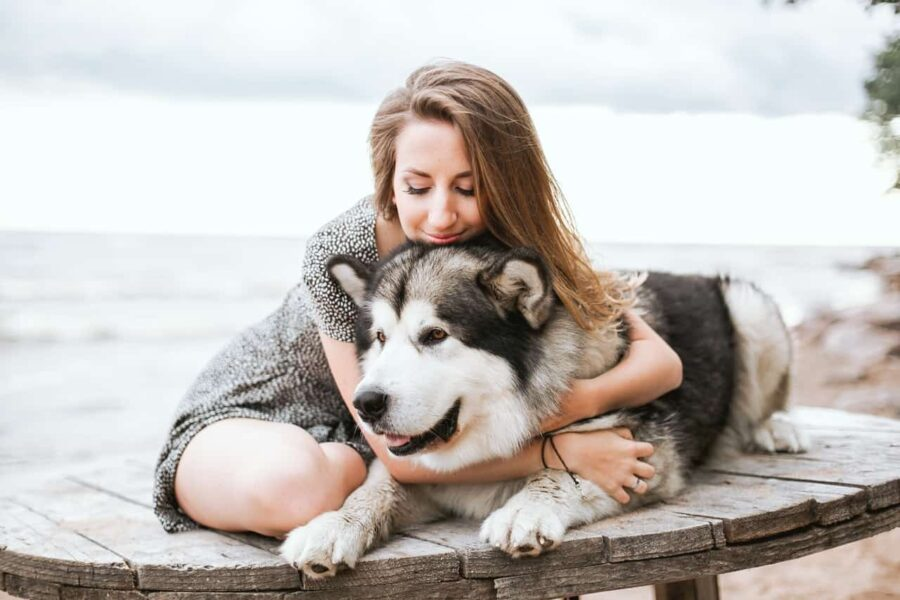 Dog shaking after grooming? Give it plenty of hugs and cuddles!