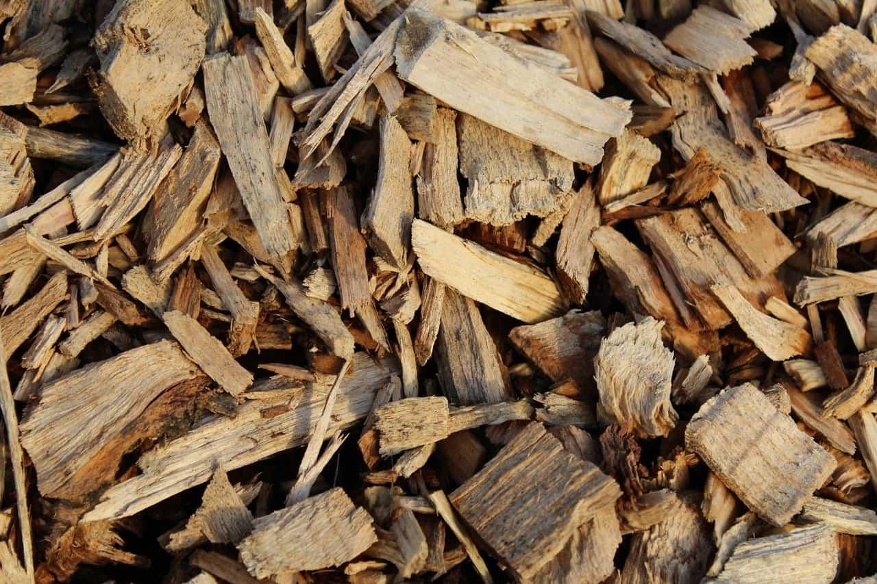 Tree bark and mulch