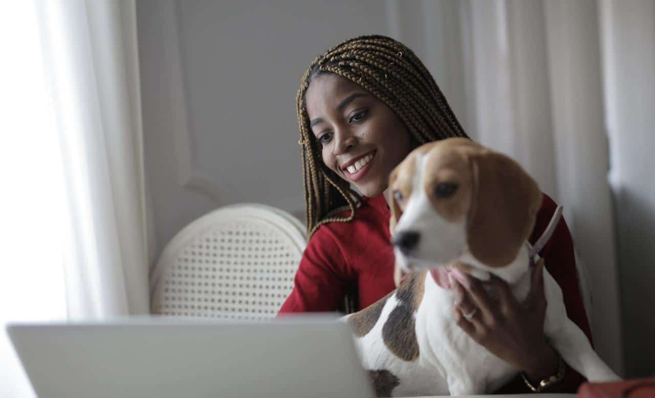 Woman holding her dog looking at laptop