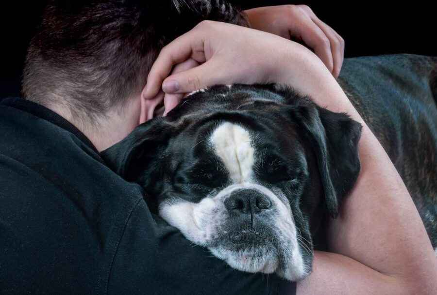 Man hugging black and white bulldog