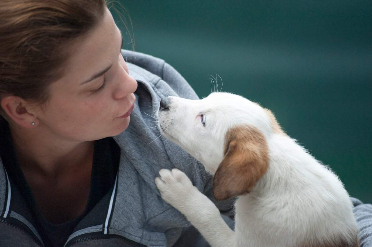 Woman telling a puppy to stop nibbling ears