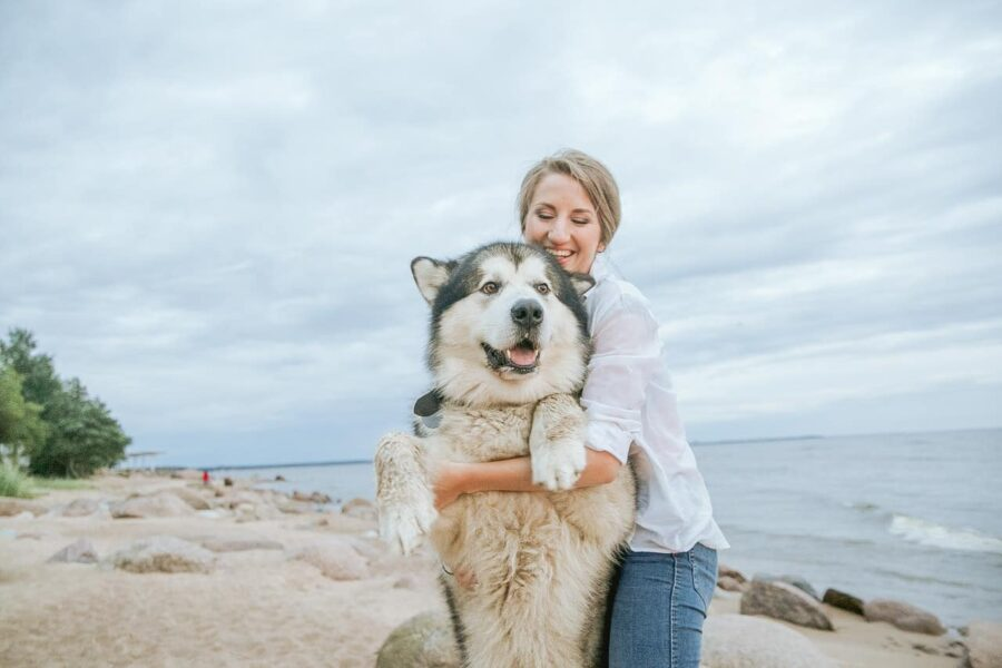 Woman hugging Siberian Husky