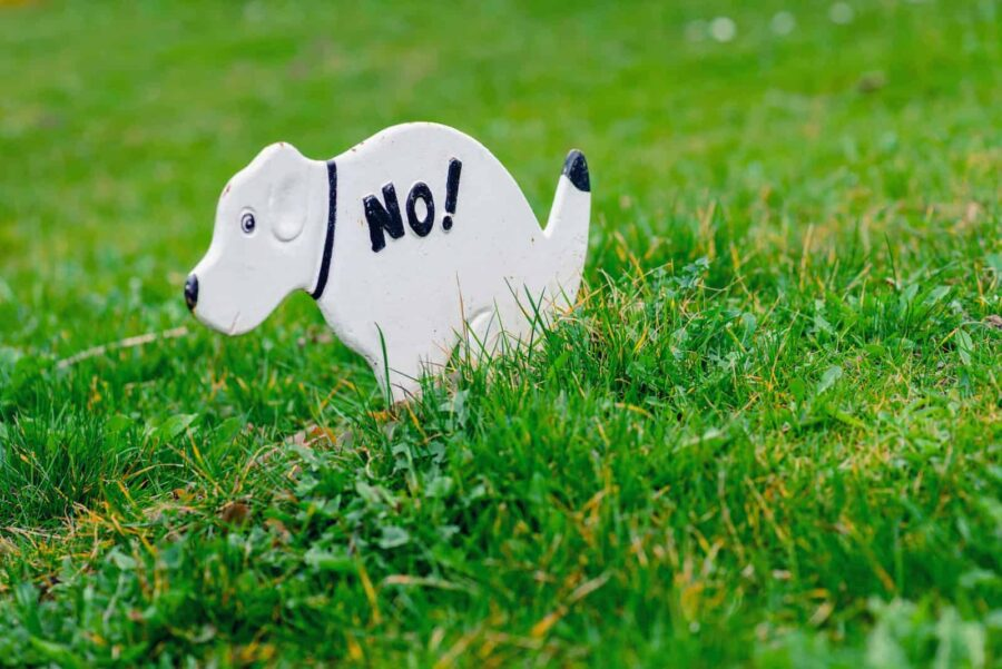 No Pooping On The Grass Sign, Shaped Like A Dog
