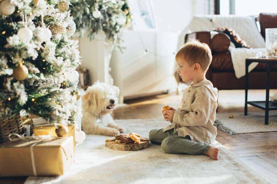 Boy and dog sitting next to Christmas tree
