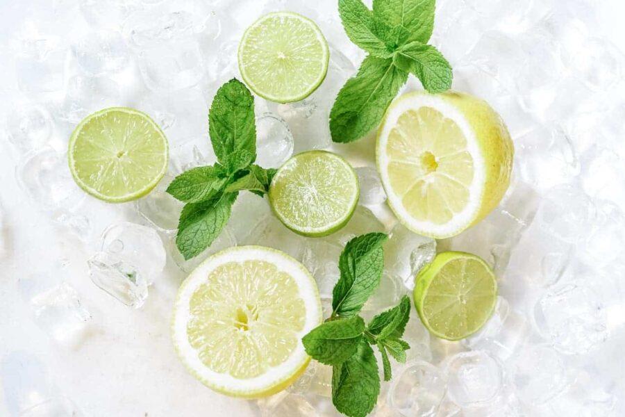 Lemon mint and ice cubes