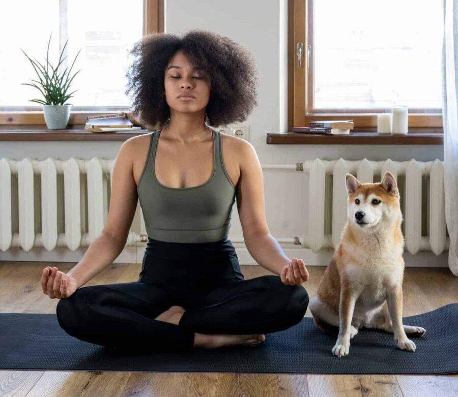 Dog sitting next to woman doing yoga