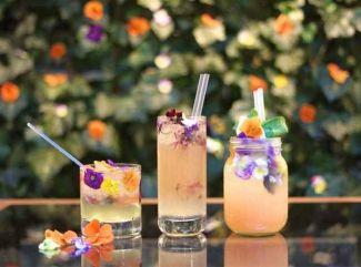 edibleflowercocktail